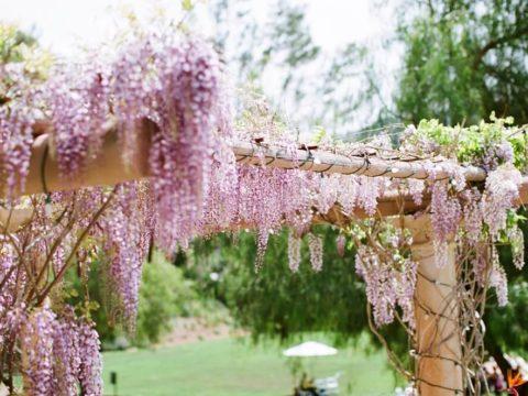 Экоидея для дачи — как сделать деревянную перголу для цветов