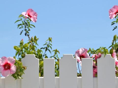 6 простых идей, как можно сделать декоративный забор для клумбы